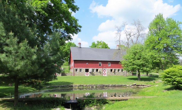 The Farm at Pond Lily