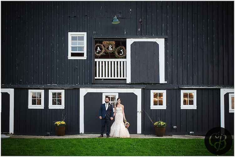 Top barn wedding venues michigan rustic weddings hydrangea blu barn junglespirit Choice Image